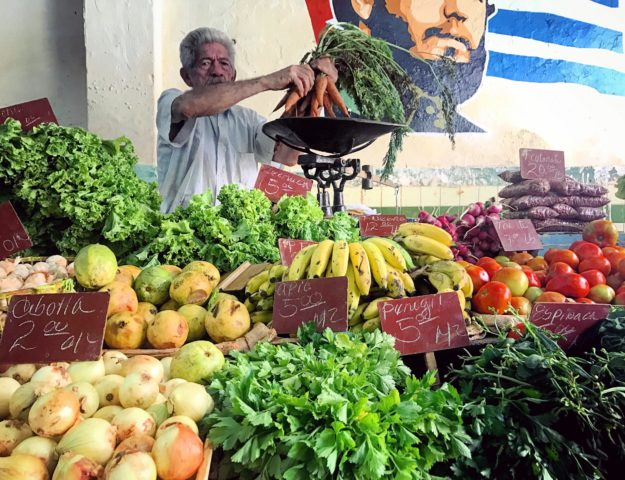 Fruits and Veggies Market Havana Cuba